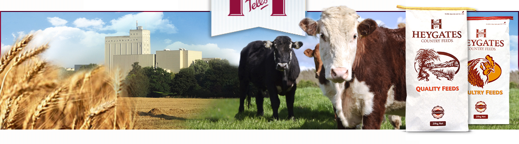 Livestock feed suppliers - Heygates